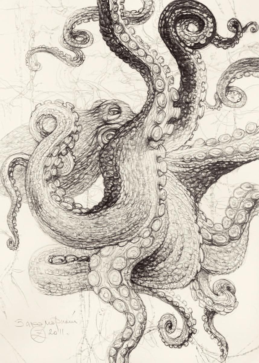 Олег Закоморный. Тихоокеанский осьминог