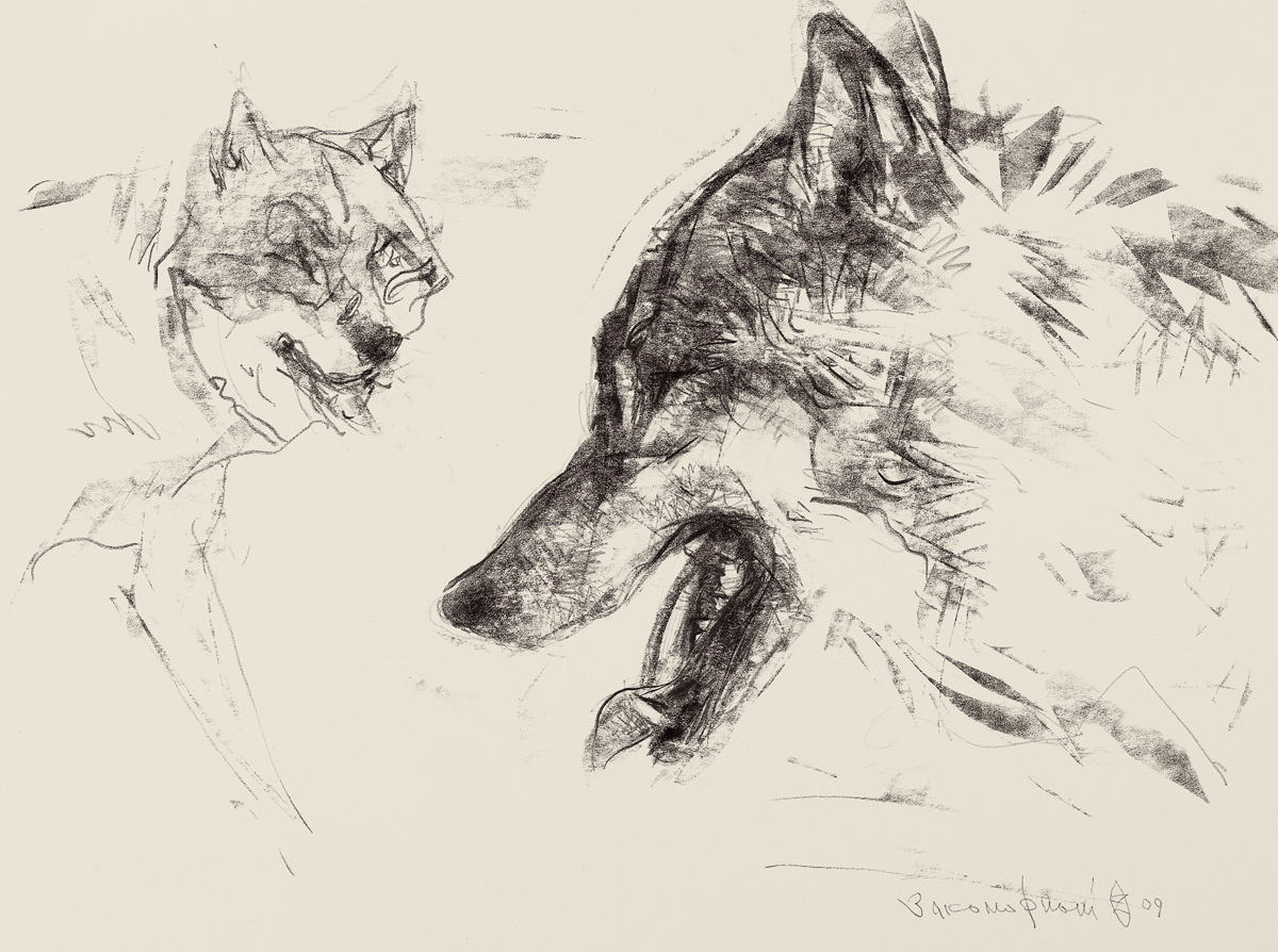 Two Wolf Heads
