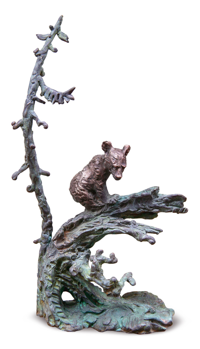 Little Bear in a Forest