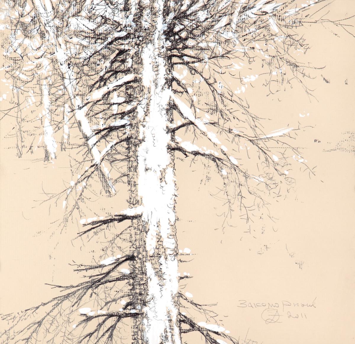 Le tronc aux branches sous la neige