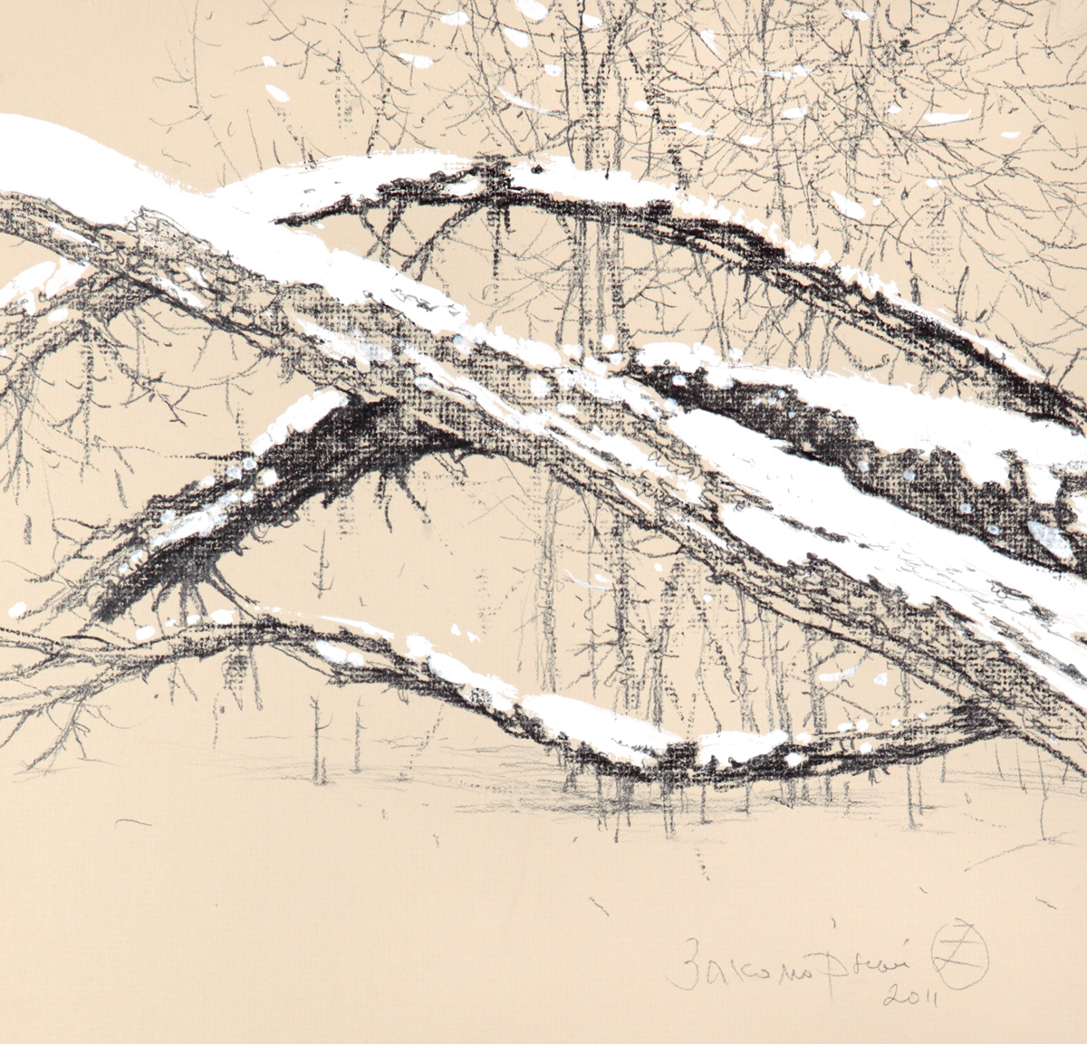 Branches Under The Snow