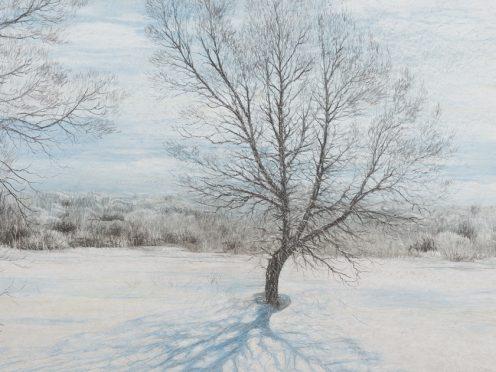 Выставка Олега Закоморного в театральной Фойе-галерее имени Сергея Зимина