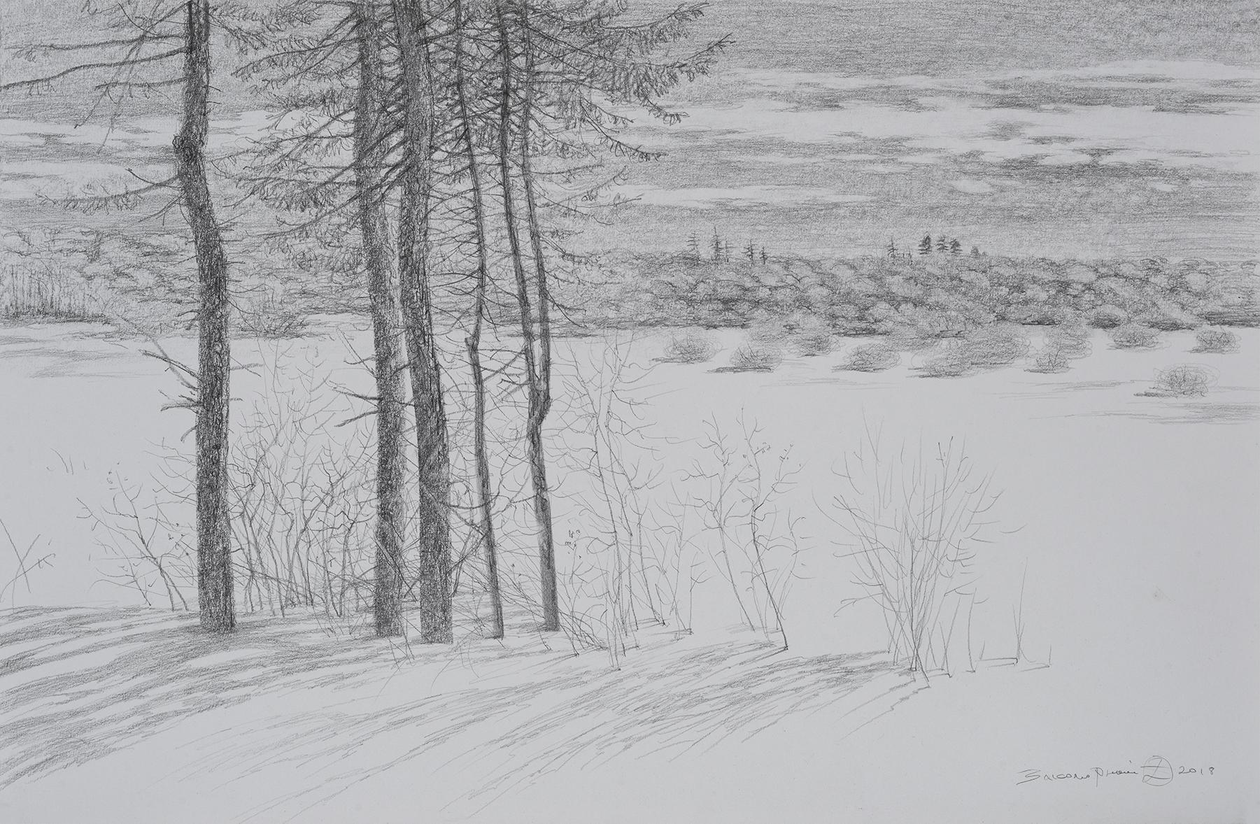 Олег Закоморный. Тени на снегу. 2018